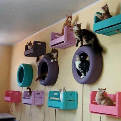 Cat_Beds 3