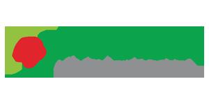 Logo-PTG_Mazda City